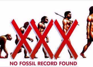 evolution lies