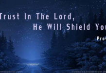 Trust The Lord . To Shield Yoyu