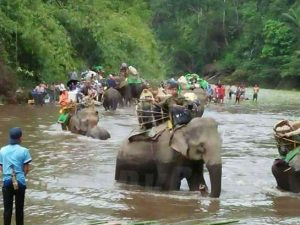 Kachin Christians escape with the help of elephants