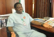 Special Adviser to the President Muhammadu Buhari on Media and Publicity, Femi Adesina
